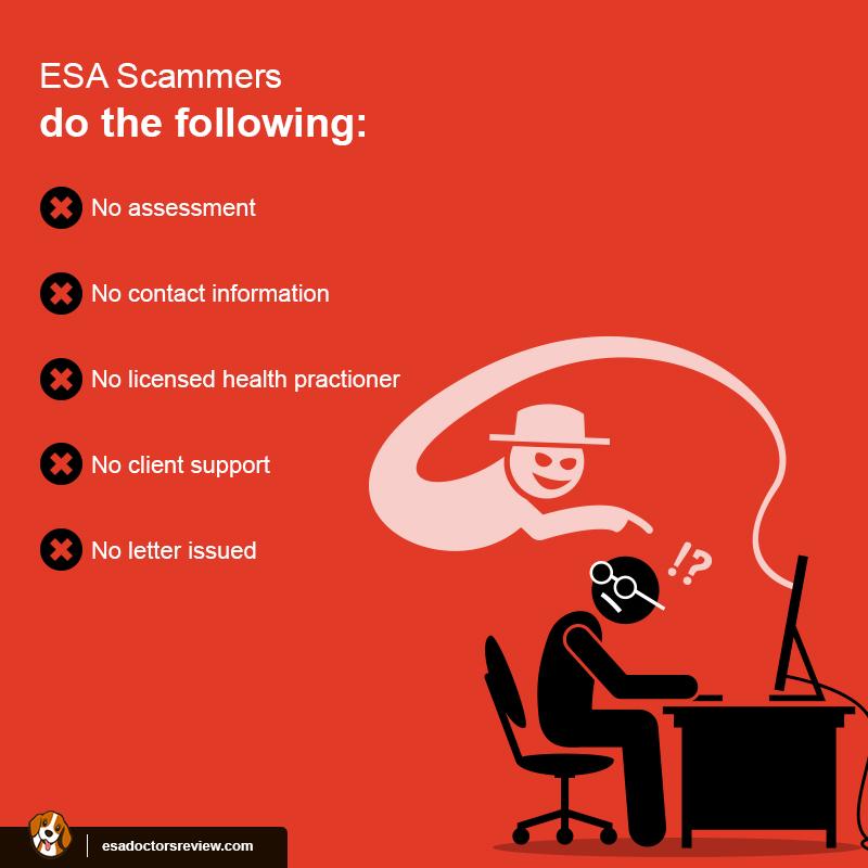 ESA Letter Scam Alert
