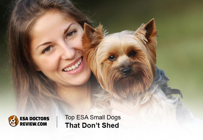 ESA dogs