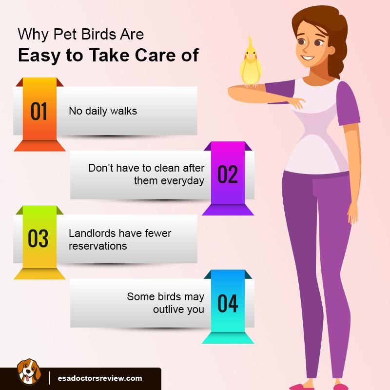 ESA Birds